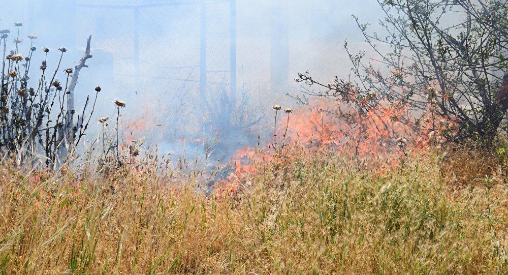 Nizami Gəncəvi parkı yandı